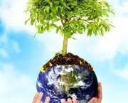 tudo-sobre-meio-ambiente6