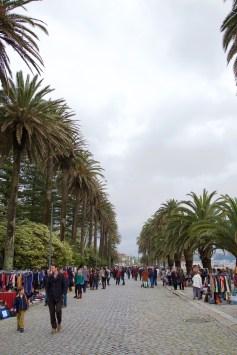 Foz do Douro - rommelmarkt