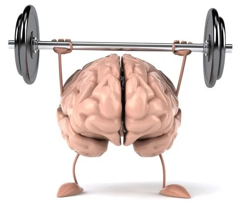 cerebro en forma