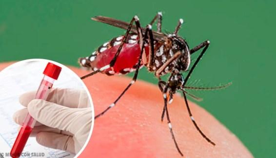 Resultado de imagen para dengue