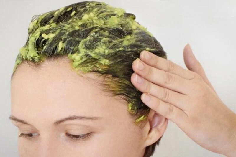 aguacate-cabello