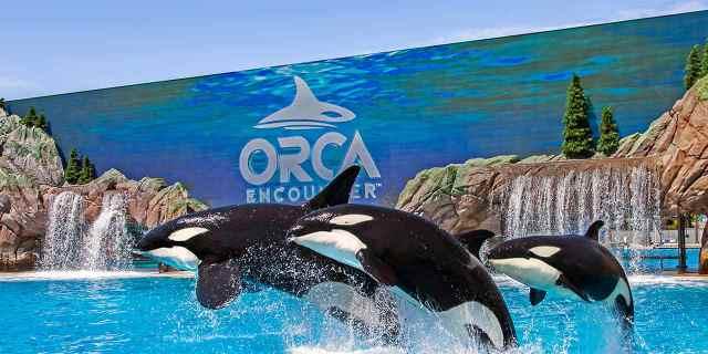 Mejor zona donde alojarse en San Diego - Cerca de SeaWorld & Mission Beach