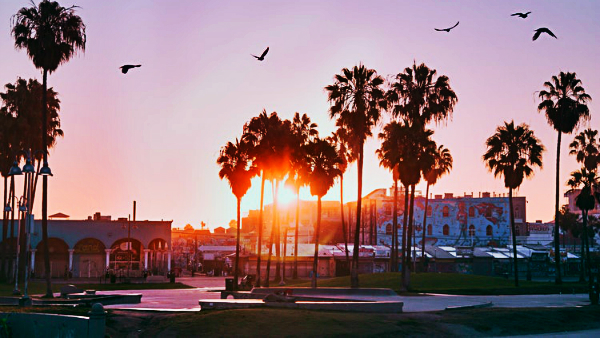 Best areas to stay in Los Angeles - Venice Beach
