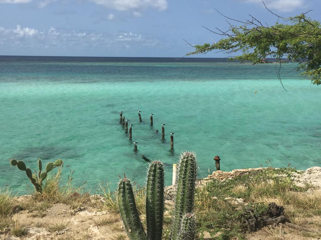 Dónde hospedarse en Aruba - Savaneta