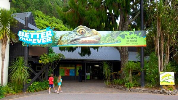 Dónde hospedarse en Rotorua - Rainbow Springs Kiwi Wildlife Park