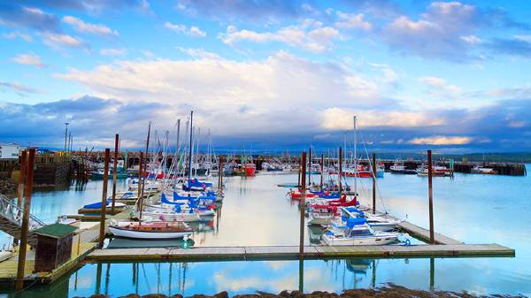 Where to stay in Digby - Downtown & Waterfront