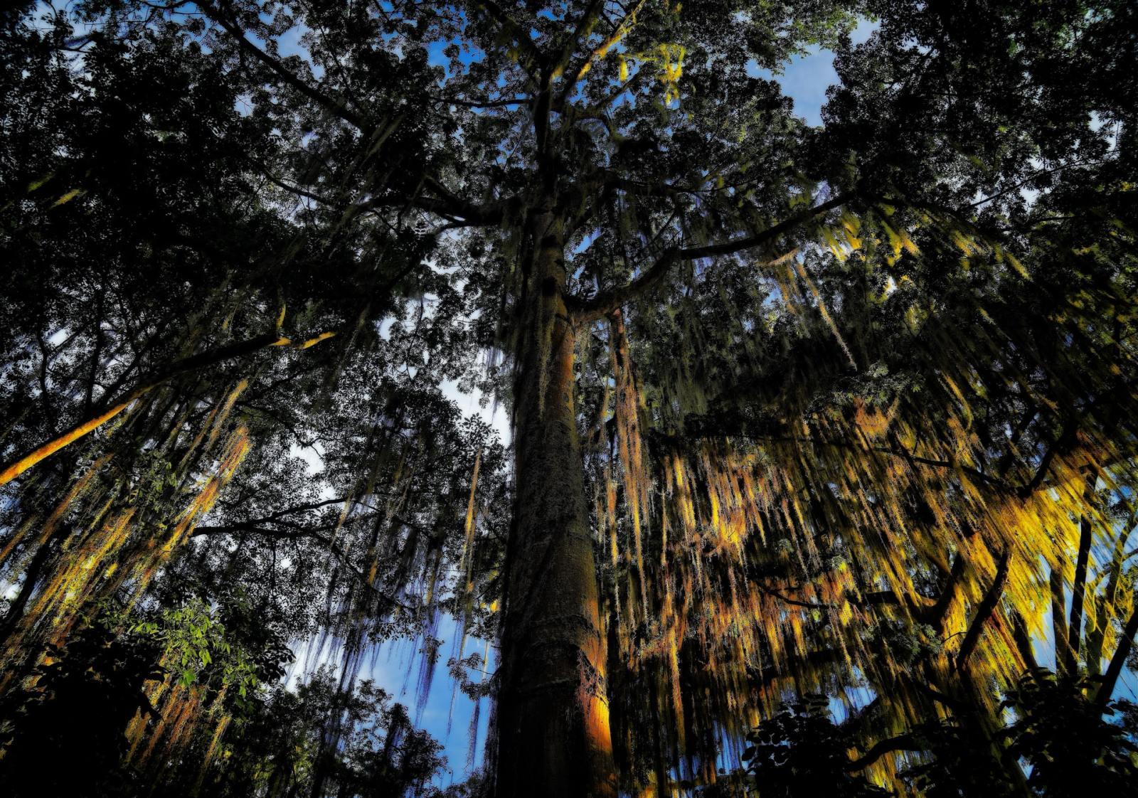 Las mejores zonas donde alojarse en San Gil, Colombia