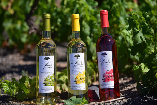 Alojarse en la Ruta del Vino de Lanzarote