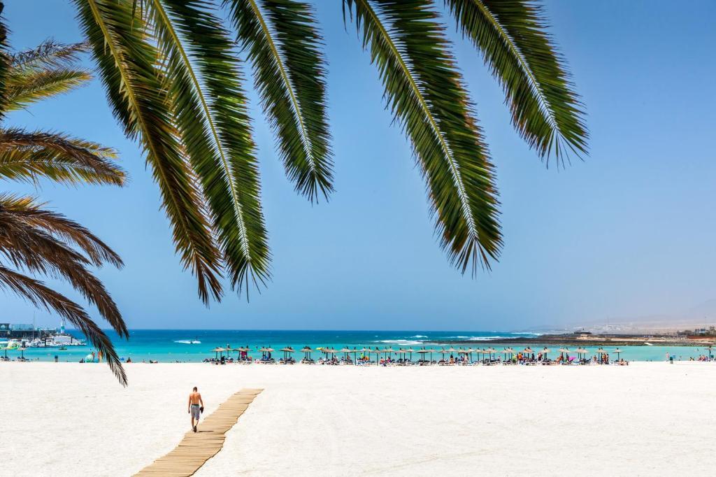 Mejor zona para familias en Fuerteventura - Caleta de Fuste