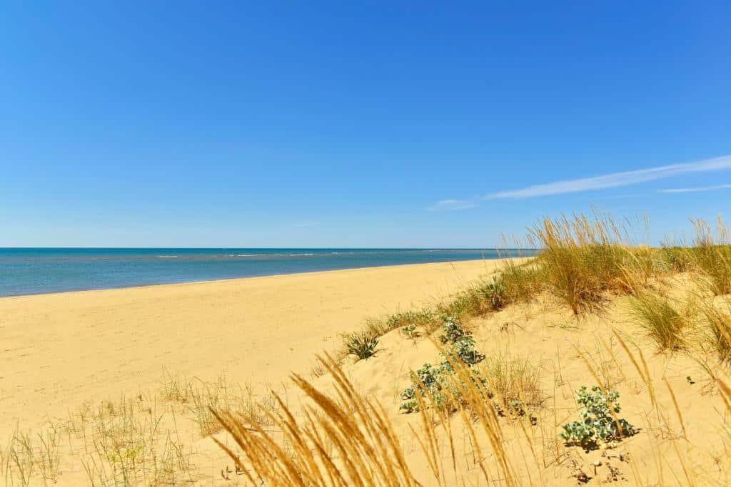 Isla Canela es la mejor zona donde alojarse en la costa de Huelva