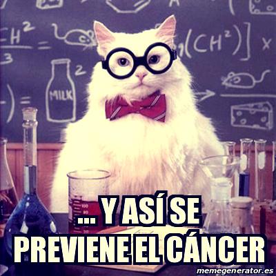 prevenir_cancer_gato
