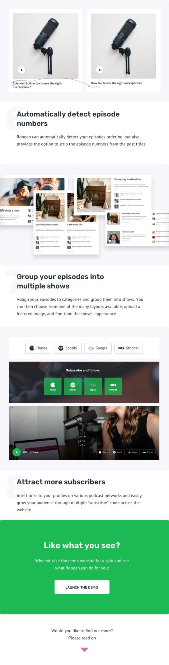Podcast Personal WordPress Theme - Roogan - 4