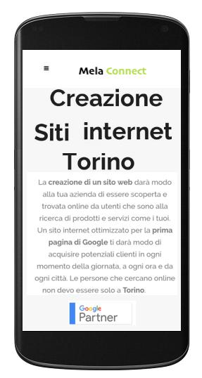 Creazione siti web Torino Ecommerce Profesionali