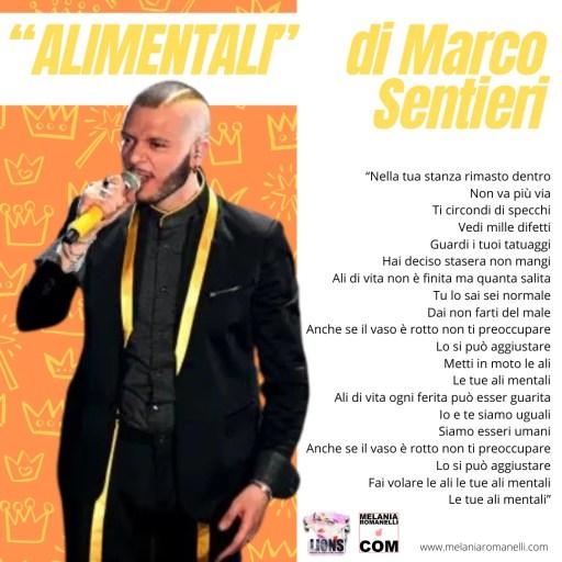 Marco-Sentieri-ali-mentali-testo-canzone