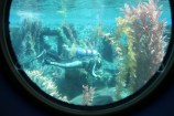 Finding Nemo Submarine