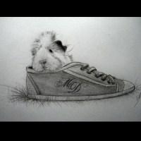 Nouveau dessin - Carl, le cochon d'Inde