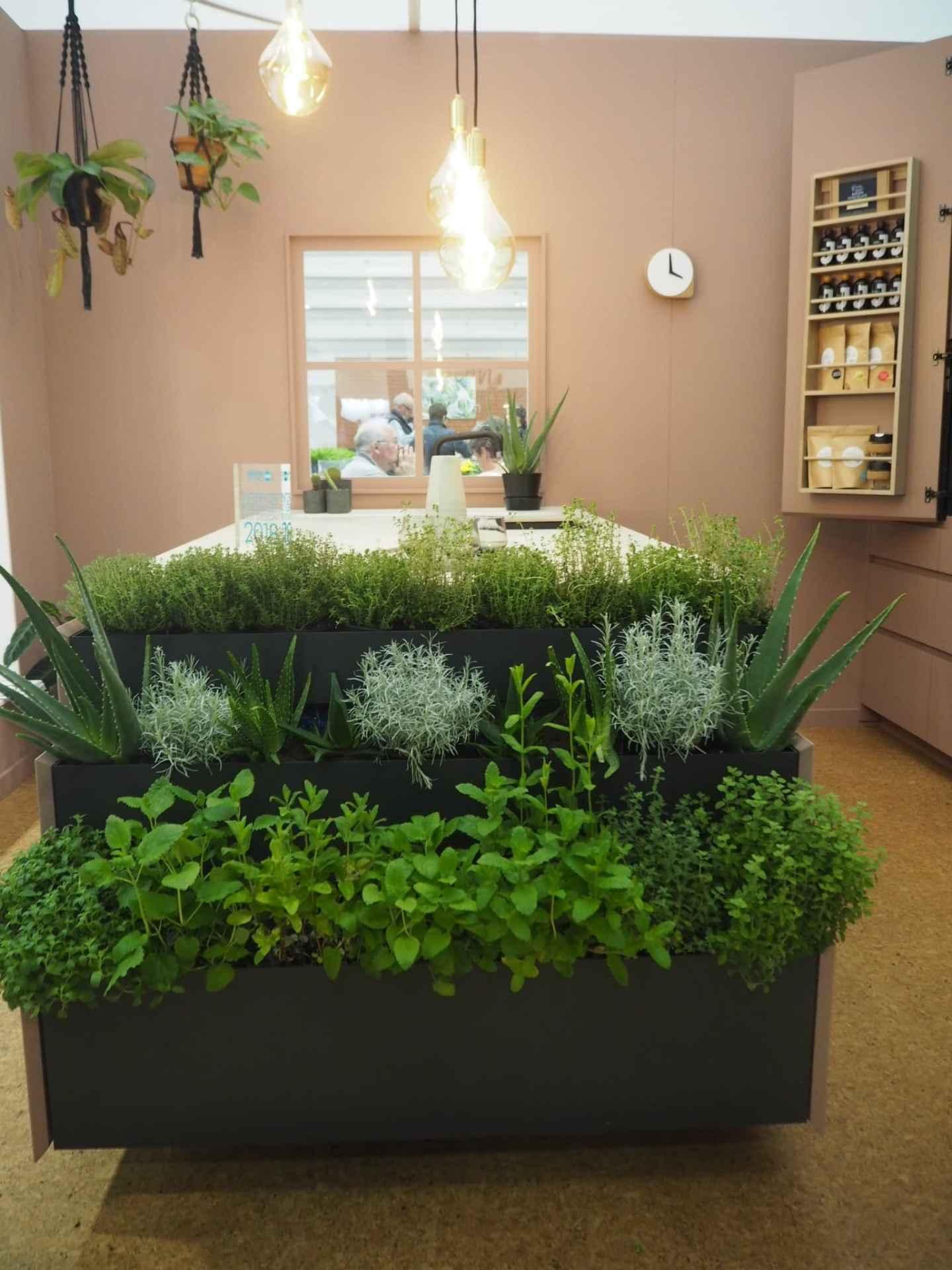 The herb garden and cork flooring