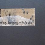 Running. Foraging. Wild Leeks. 2011