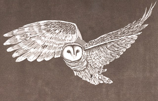 Why owl, why? Four-color reduction linoleum print.