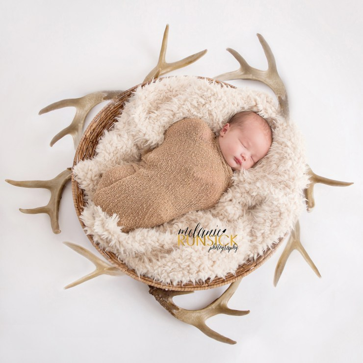 Newborn Photographer north east ar