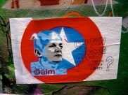 Calm - Captain Assange
