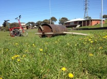 Dandelions, an old roller, and my red Brompton