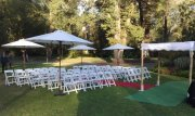 wedding in fitzroy gardens 2 re sized