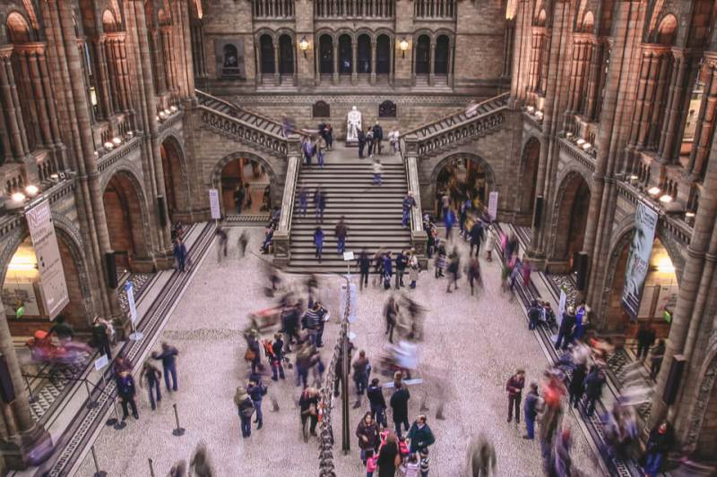 O Museu de História Natural de Londres