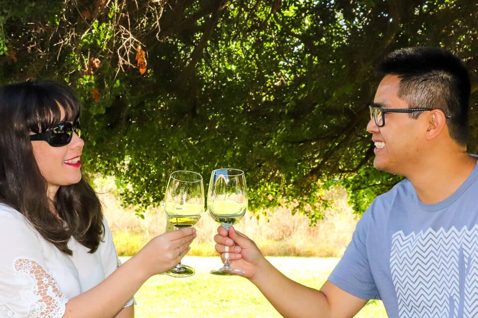 Rota dos vinhos Valle de Casablanca - vinícolas perto de Santiago - Emiliana