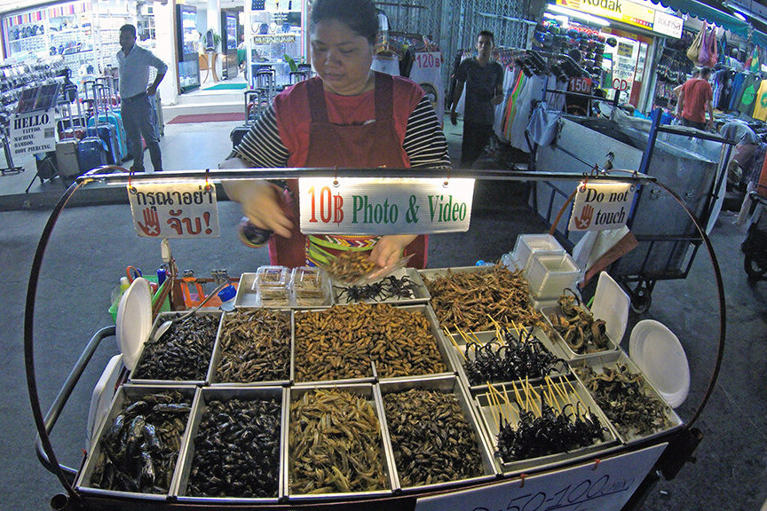 Comendo insetos na Khao San Road