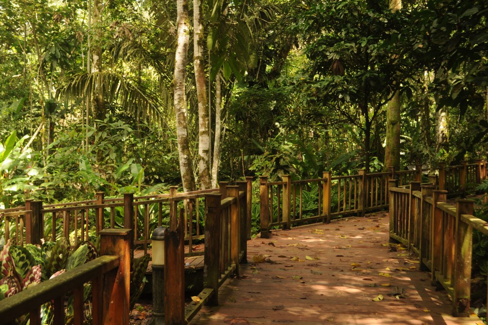 viajar sozinha - tena - equador