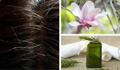 Quer esconder os cabelos brancos? Experimente uma destas 6 tinturas naturais