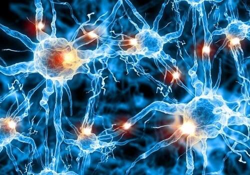 Podem-prevenir-o-Alzheimer-500x350 Como detectar o princípio da doença de Alzheimer