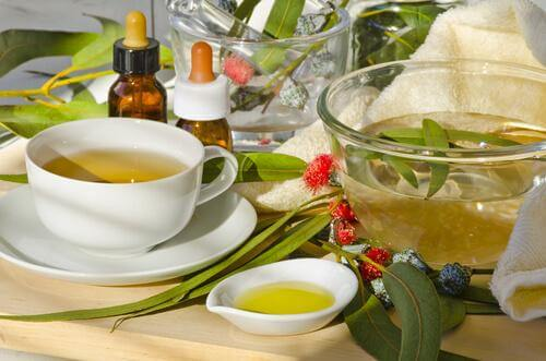 Remédios naturais contra as varizes