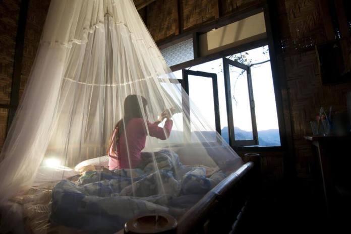 rede-mosquiteira Como evitar as picadas de mosquito noturnas?