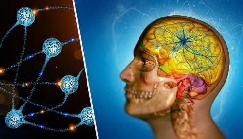barreira-hematoencefalica-500x286 Neurologista revela segredo sobre o tratamento de Metástase cerebral
