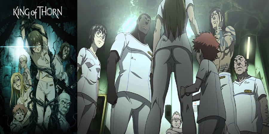 Ibara no ou (King of Thorn)