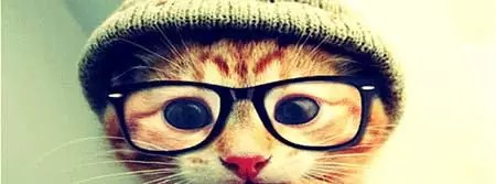 Capa Gato para Facebook