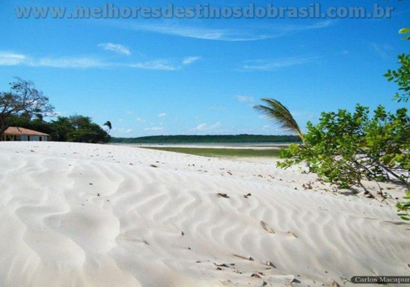 Ilha De Marajó - PA