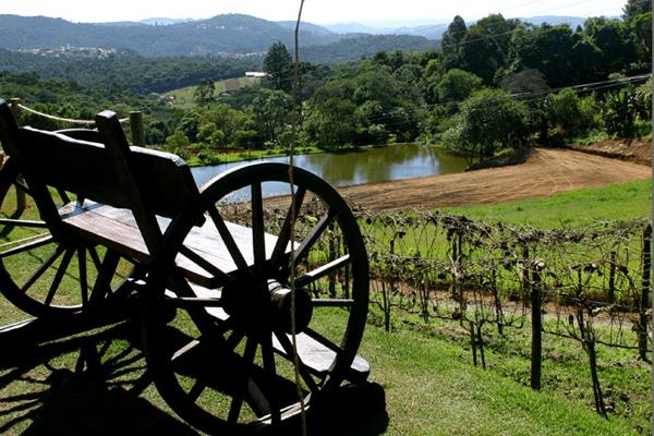 São Roque (São Paulo)