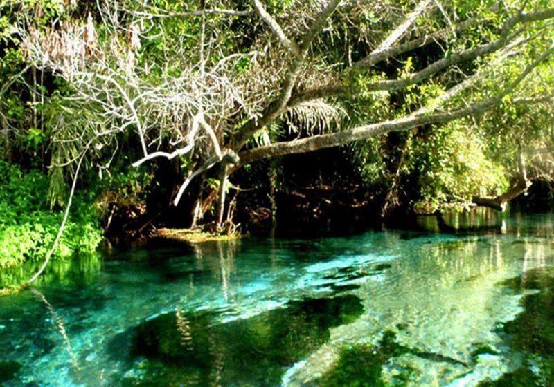 Entregue-se de corpo e alma a Bonito, o melhor destino de ecoturismo do Brasil