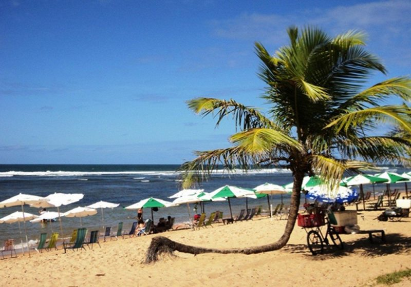 Morada Das Tartarugas - Praia do Forte - Bahia