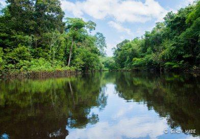 Floresta Amazônica – Um lugar para visitar ao menos uma vez