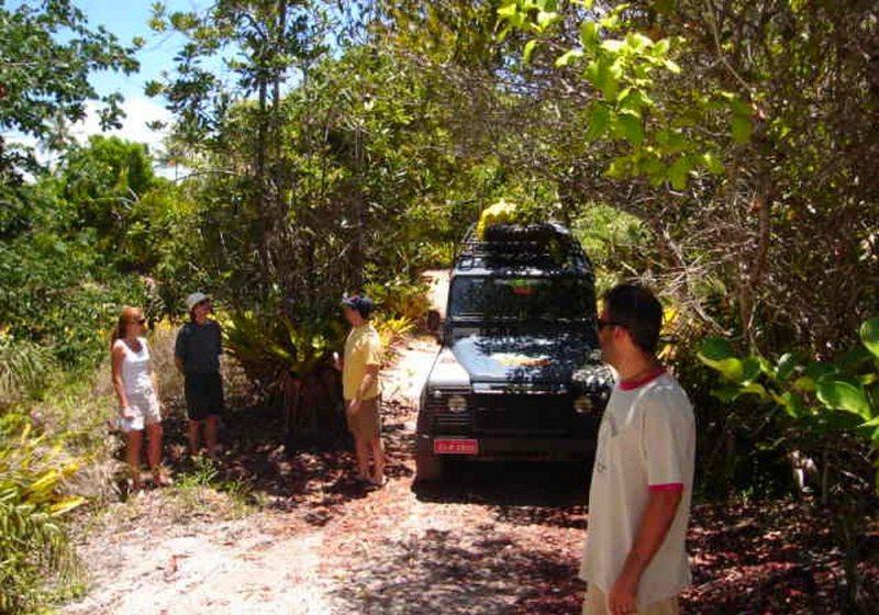 Floresta' de bromélias gigantes e praia de rio são atrações da Península de Maraú