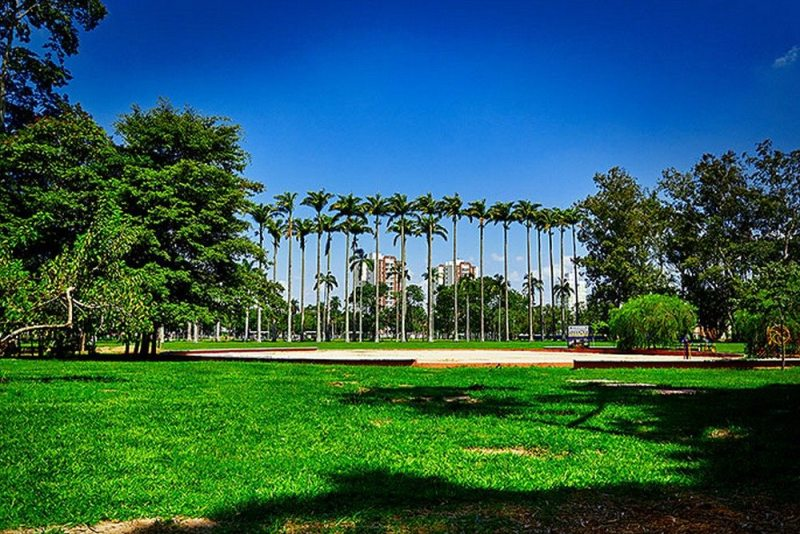 Parque da Cidade Roberto Burle Marx