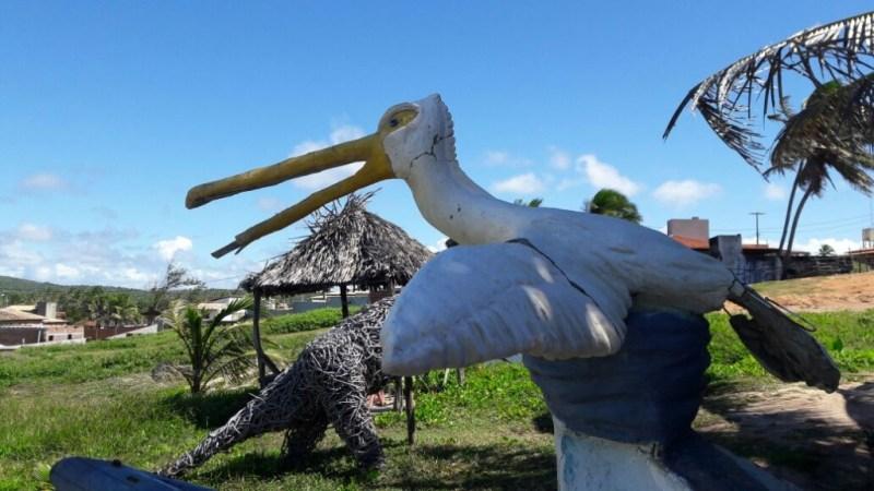 Rio, Falésias, piscinas naturais e balé das tartarugas marinhas em Sibaúma