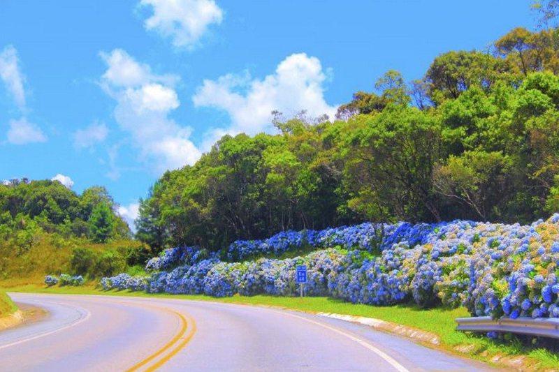bons motivos para viajar mais pelo Brasil em 2017