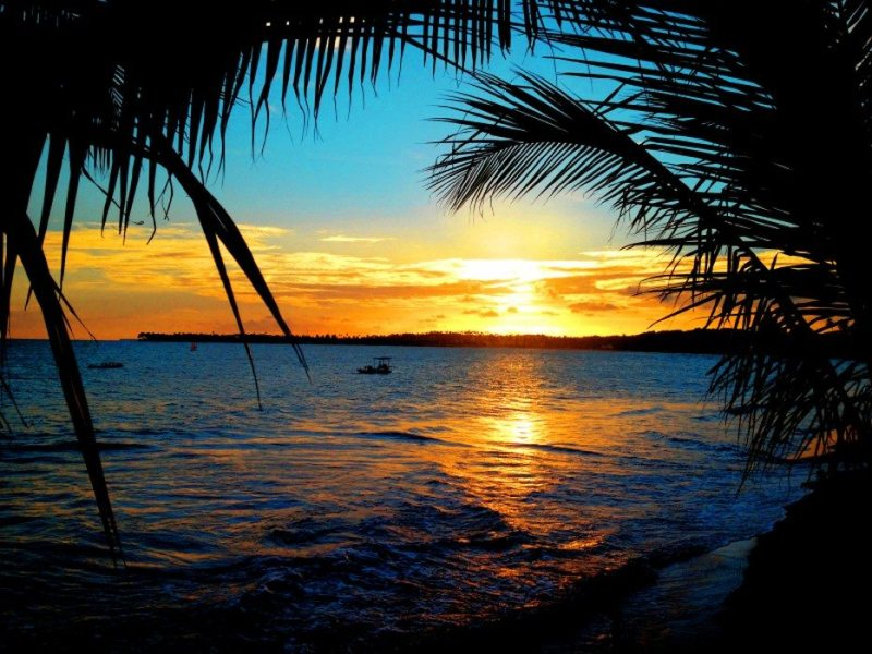 Por Do Sol Alagoas Brasil Viagens