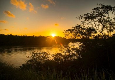 """Descubra As Belezas Do """"Pantanal Baiano"""" No Rio Jucuruçu"""