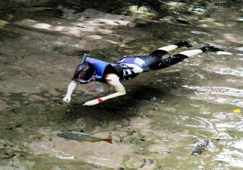 Mergulho Em Nobres